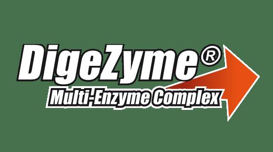 digezyme enzymy trawienne