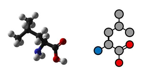 LEUCYNA wzór chemiczny