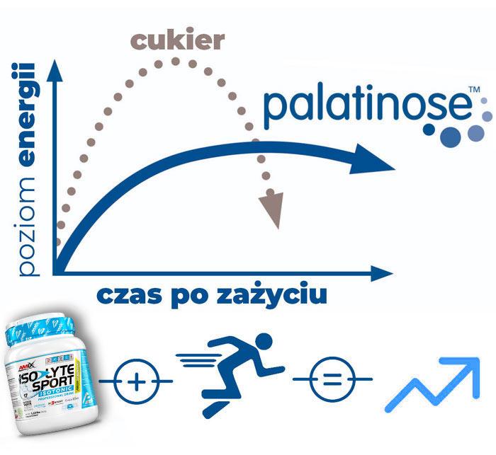 palatynoza-Amix-Iso-Lyte
