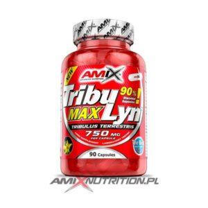 Tribu Lyn Amix 90 caps