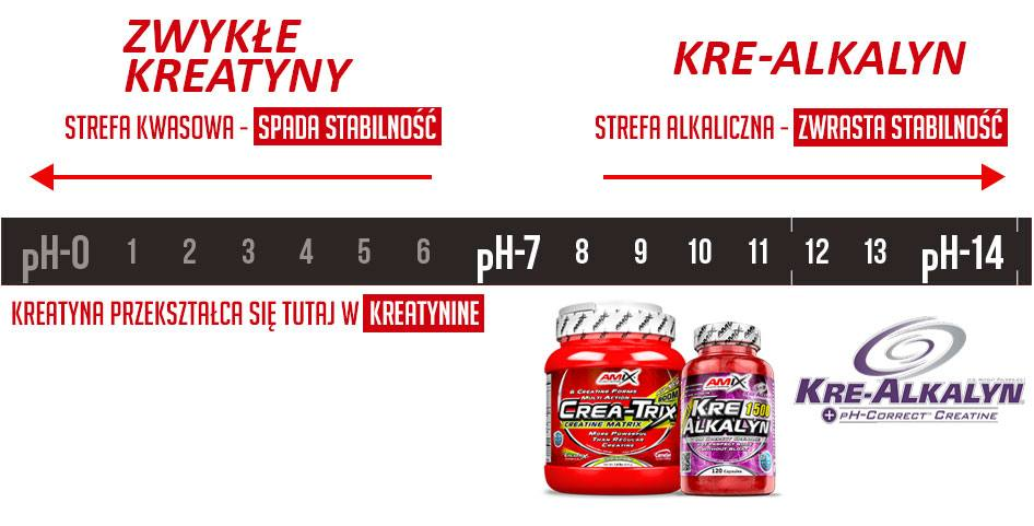 kreatyna kre-alkalyn PH