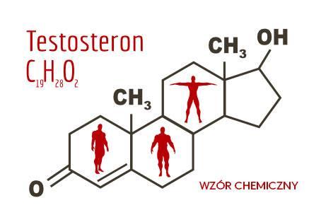testosteron wzór chemiczny