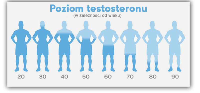 poziom-testosteronu-wiek