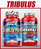 amix tribulus