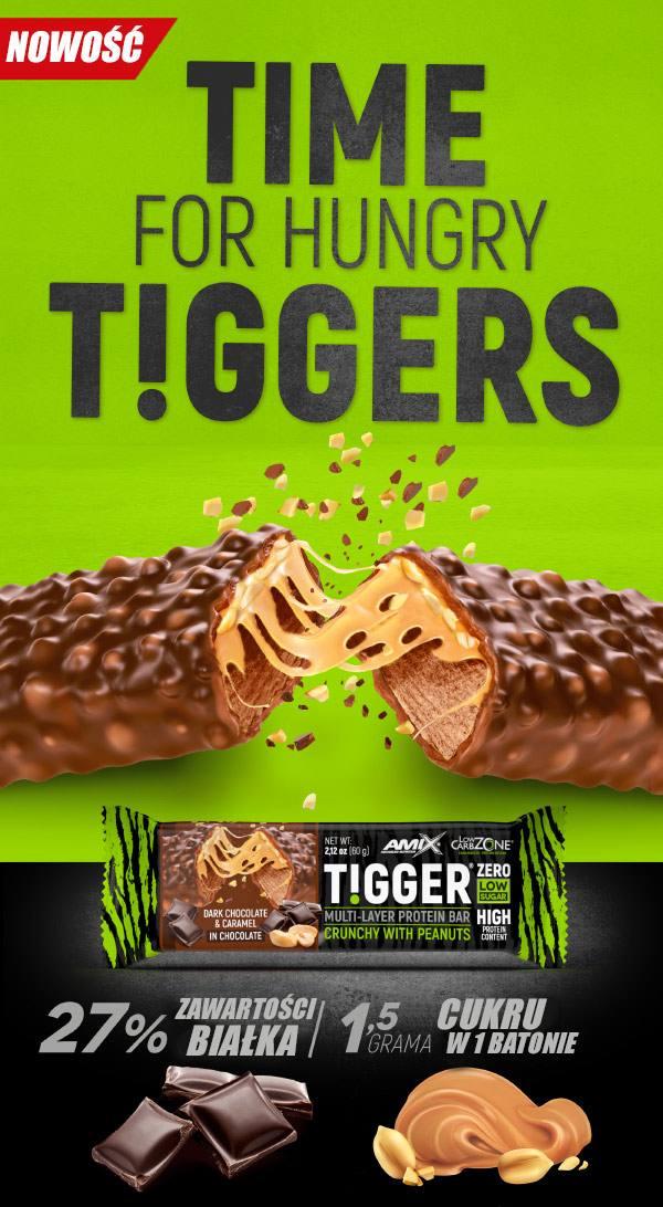 amix-tigger-zero-baner-