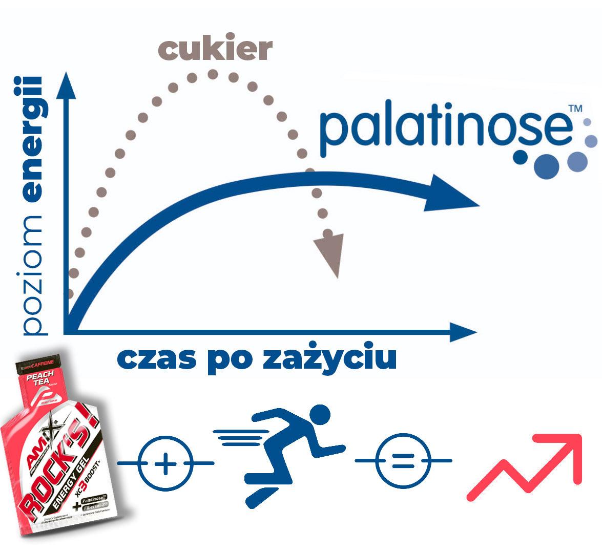 jaka działa palatynoza
