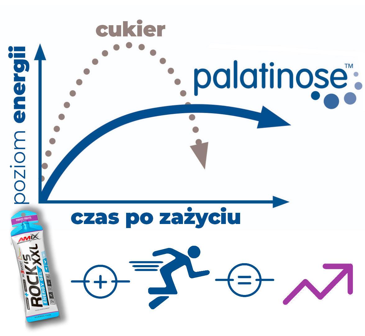 palatynoza-wykres-działanie