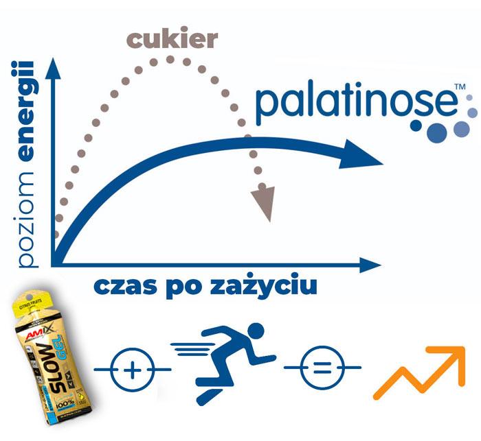 żel-energetyczny-z-palatynozą